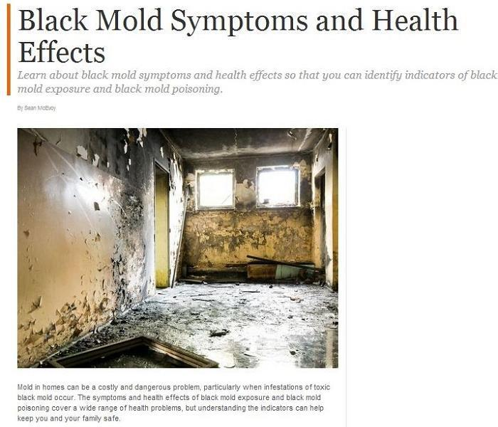 Mold Remediation Why It's Important to get Mold Damage Restoration in Rancho Santa Margarita